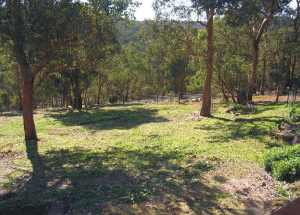 warrandyte view