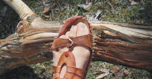 foot branch
