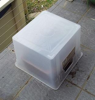tomatoe nursery box