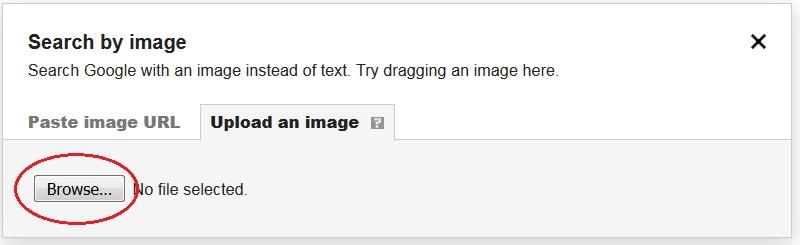 googleimages 6