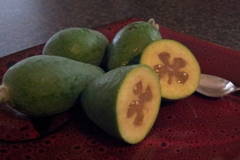 feijoa on the inside 003